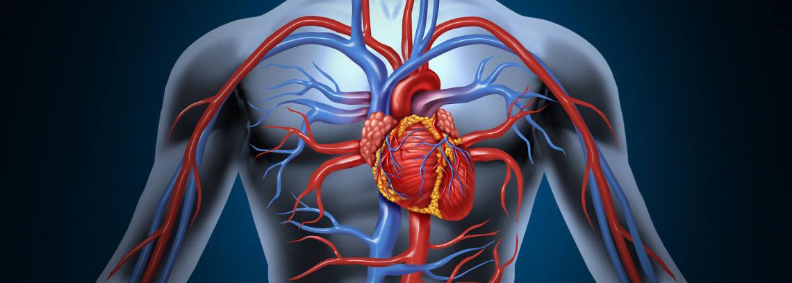Cardiologia_web