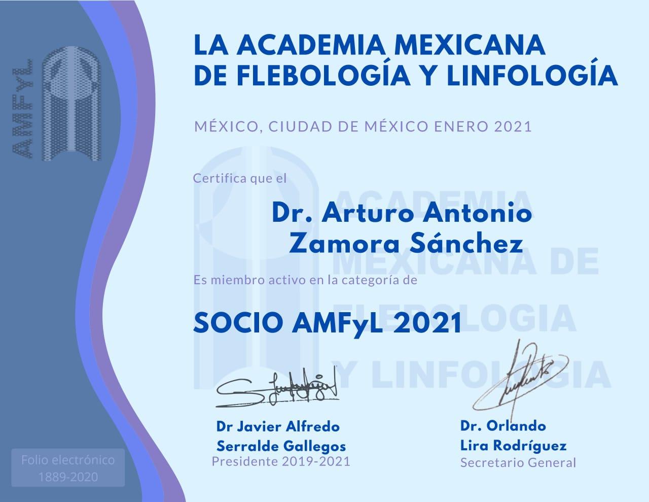 diplomado dr zamora flebologia